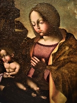 Madonna and Child with San Giovannino-3